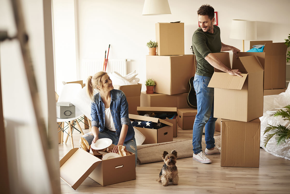 Best Adelaide to Newcastle moving companies